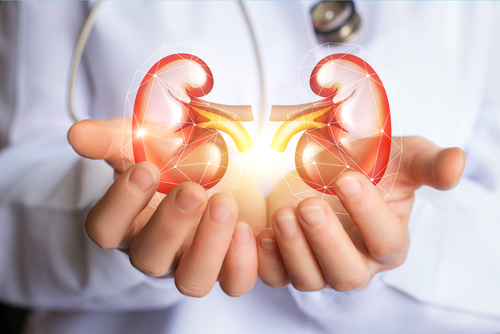HOW TO KEEP KIDNEYS HEALTHY